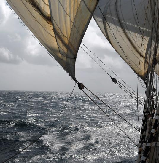 Darwin200 Ship sail